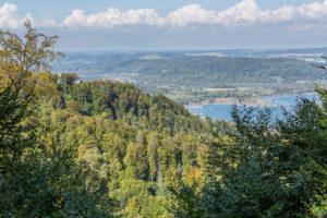 Wanderung zum Echo - Aussichtsreiche Wanderung am Überlinger See