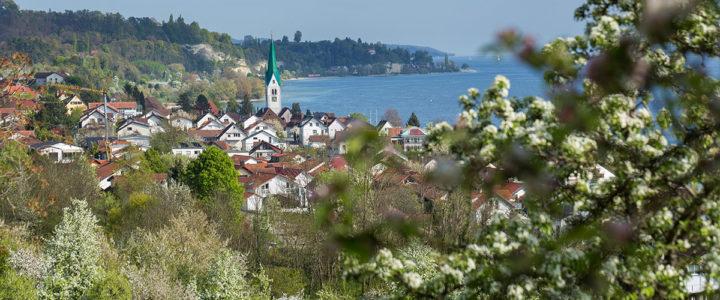 Blütenweg – Haldenhof