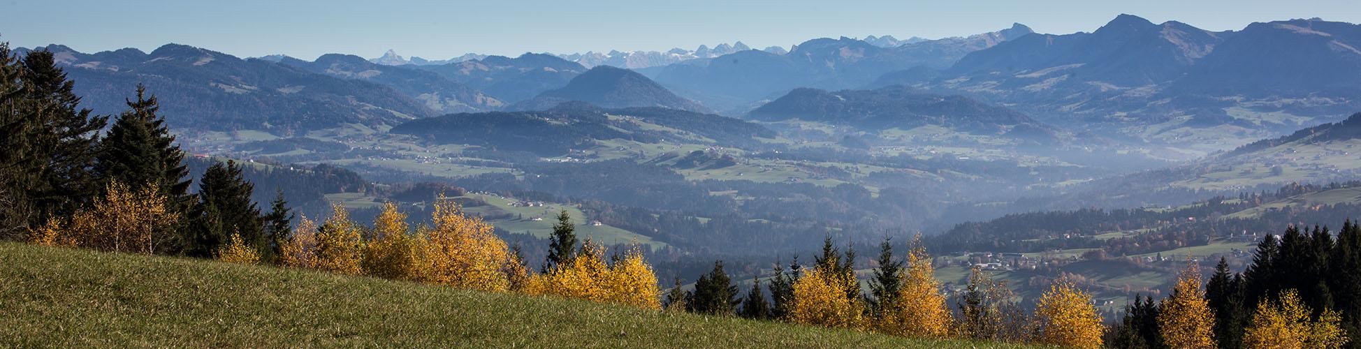 Wandern Pfänder Bodensee